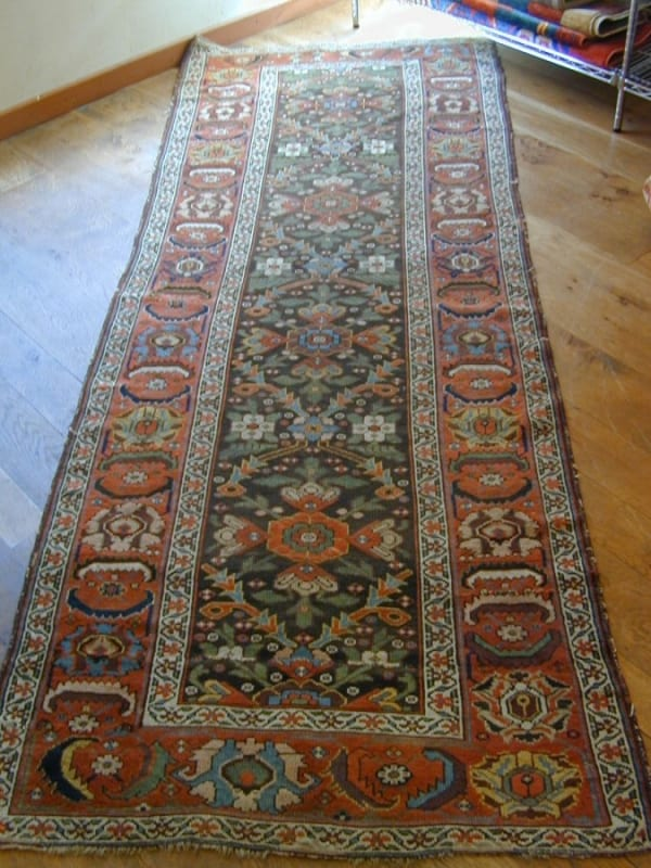 AL Kurdish long rug 600x800 - Andy Lloyd of Haliden