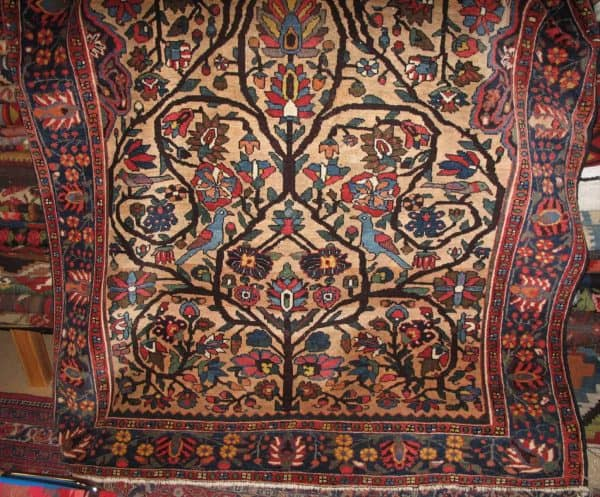 Bakhtiari carpet 600x497 - Chahar Mahal Va Bakhtiari - Meeting in the Danish Rug Society